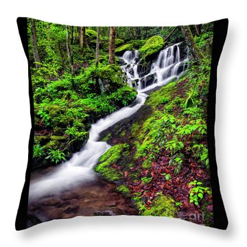 Tremont Area Waterfall Throw Pillow by Madonna Martin