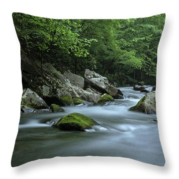 Tremont Throw Pillow