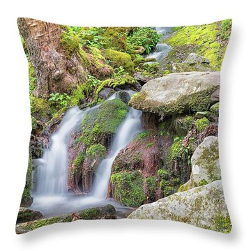 Tremont Road Waterfall Throw Pillow
