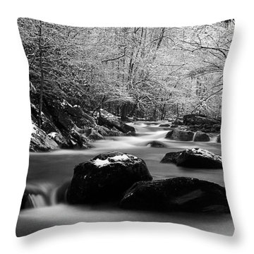 Tremont Treasure Great Smoky Mountains National Park Black And White Throw Pillow