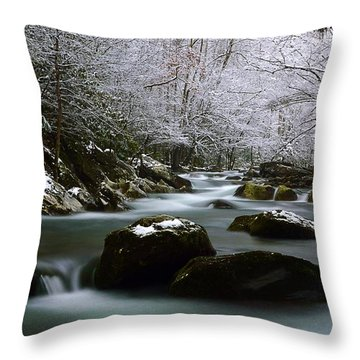 Tremont Treasure Great Smoky Mountains National Park Throw Pillow