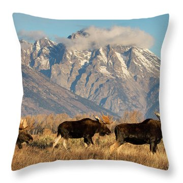 Tres Amigos Throw Pillow by Aaron Whittemore