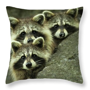 Tres Banditos Throw Pillow