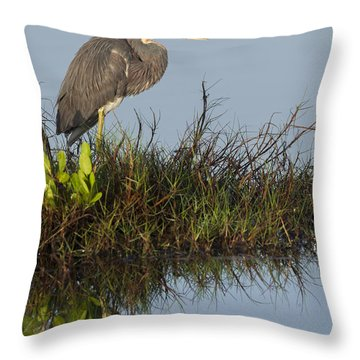 Tri-colored Heron And Reflection Throw Pillow