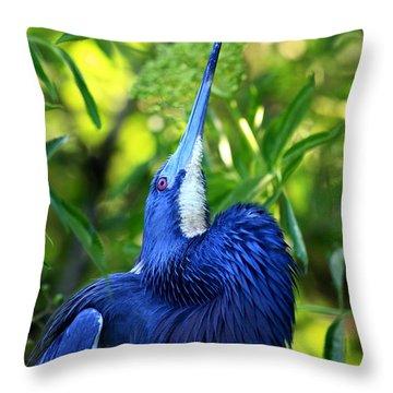 Tri-colored Heron Head Throw Throw Pillow