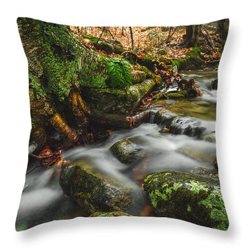 Tributary Throw Pillow