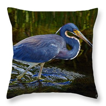 Tricolor Heron Throw Pillow by Larry Nieland