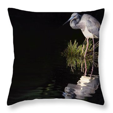 Tricolor Heron Reflection Throw Pillow by Don Durfee
