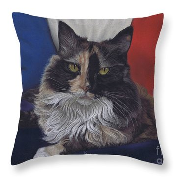 Tricolore Throw Pillow