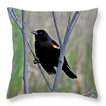 Tricolored Blackbird Throw Pillow