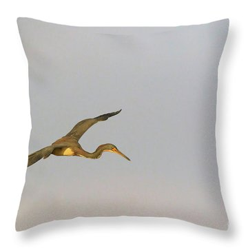 Tricolored Heron In Flight Throw Pillow by Louise Heusinkveld