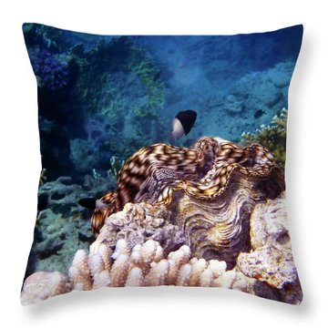 Tridacna Squamosa  Throw Pillow