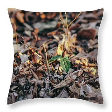 Trillium Blooming In Leaves On Forrest Floor Throw Pillow