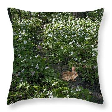 Trillium Woods No. 3 Throw Pillow