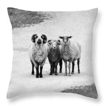 Trio #1478 Throw Pillow