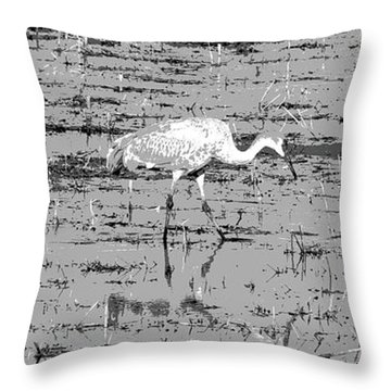 Trio Of Cranes Throw Pillow