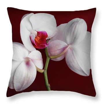 Trio Of Orchids Throw Pillow