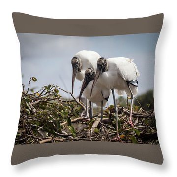 Trio Of Wood Storks Throw Pillow