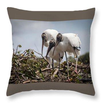 Trio Of Wood Storks Throw Pillow