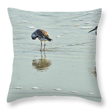 Trio Of Willets On Jekyll Throw Pillow by Bruce Gourley