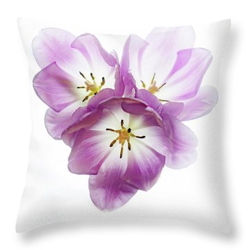 Throw Pillow featuring the photograph Trio Squared by Rebecca Cozart
