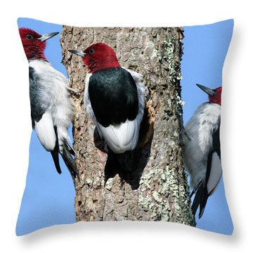 Tripecka Throw Pillow