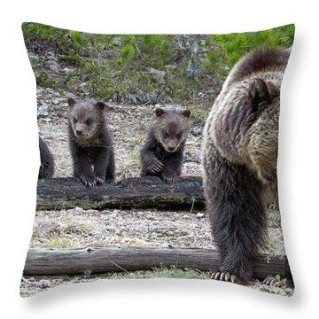 Triple Trouble Throw Pillow