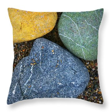 Throw Pillow featuring the photograph Triplet by Skip Hunt