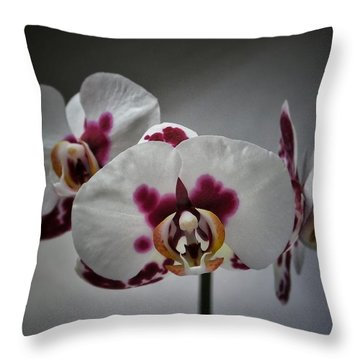 Triplets Throw Pillow by Karen Stahlros