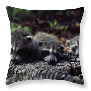 Triplets Throw Pillow by Sally Weigand