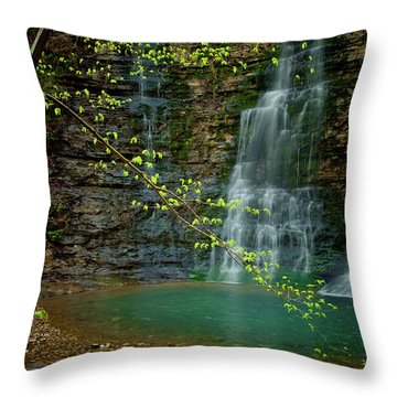 Tripple Falls Throw Pillow by Iris Greenwell