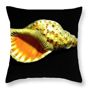 Triton Trumpet Seashell Cymatium Tritonis Throw Pillow