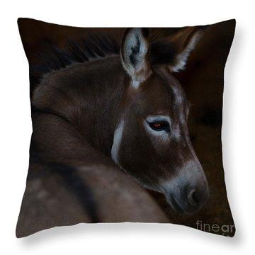 Trixie Throw Pillow
