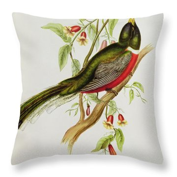 Trogon Ambiguus Throw Pillow by John Gould