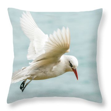 Throw Pillow featuring the photograph Tropic Bird 4 by Werner Padarin