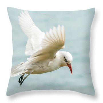 Tropic Bird 4 Throw Pillow
