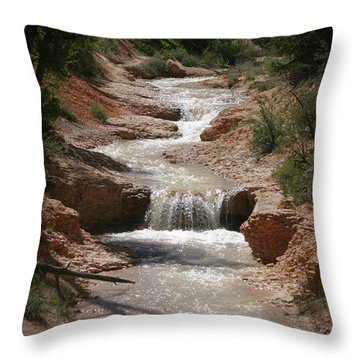 Throw Pillow featuring the photograph Tropic Creek by Marie Leslie