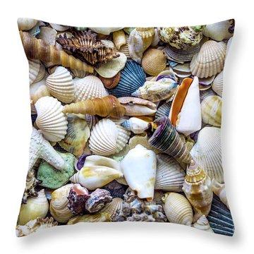 Tropical Beach Seashell Treasures 1529b Throw Pillow