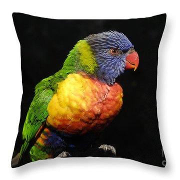 Tropical Colors Throw Pillow by David Lee Thompson