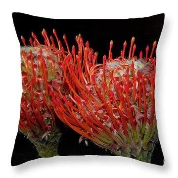 Tropical Flower Throw Pillow by Elvira Ladocki