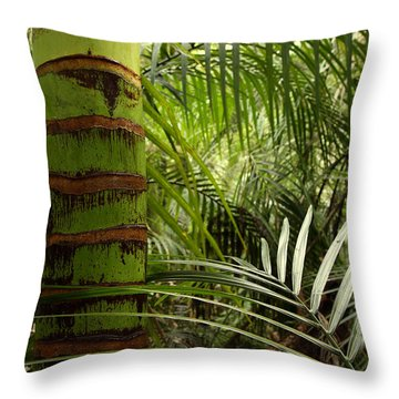 Tropical Forest Jungle Throw Pillow by Les Cunliffe