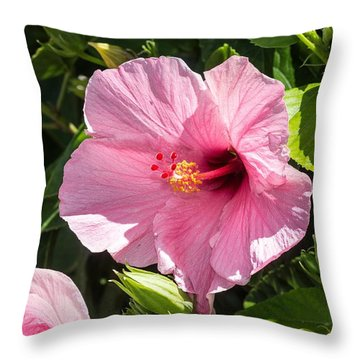 Tropical Hibiscus Throw Pillow by Nance Larson