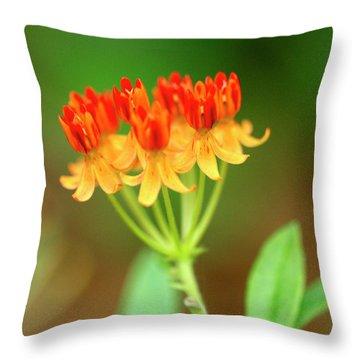 Tropical Milkweed Throw Pillow