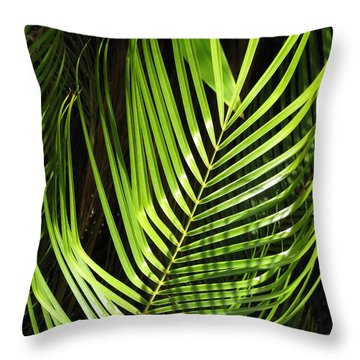 Throw Pillow featuring the photograph Tropical Palm by Carol Sweetwood