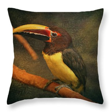 Tropical Rainforest Toucan  Throw Pillow by Maria Angelica Maira