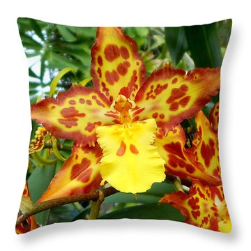 Tropical Red And Yellow Orchids Throw Pillow