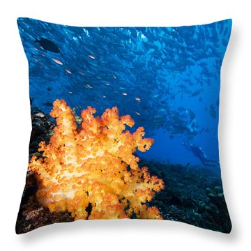 Tropical Reef Scene Throw Pillow by Dave Fleetham - Printscapes