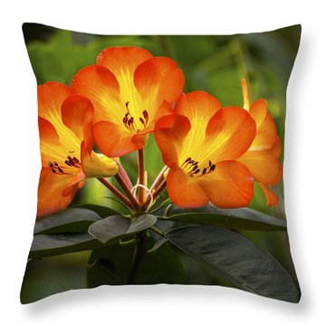 Tropical Rhododendron Throw Pillow
