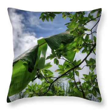 Tropical Sky Throw Pillow