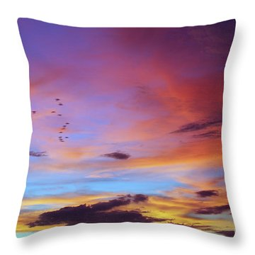 Tropical North Queensland Sunset Splendor  Throw Pillow